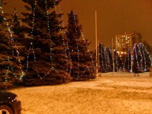 новогодние елки в РУДН