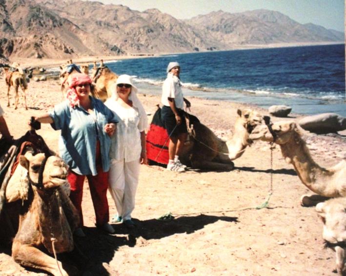 На пути в голубую лагуну, Египет