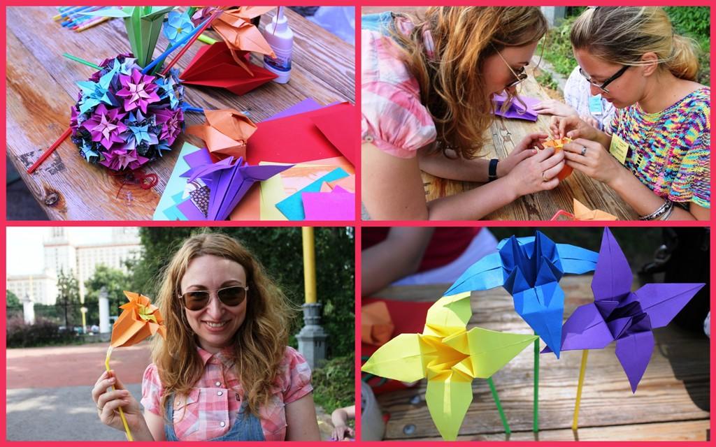 праздник ромашки в ботаническом саду  МГУ