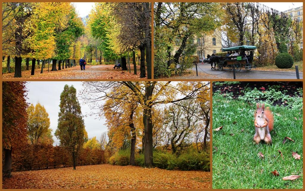 Вена, в парке Шенбрунн